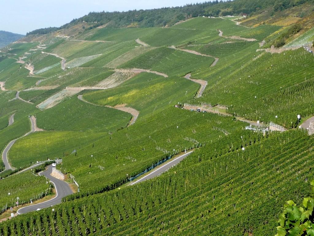 Mosel, Weinbaugebiet, Steillage