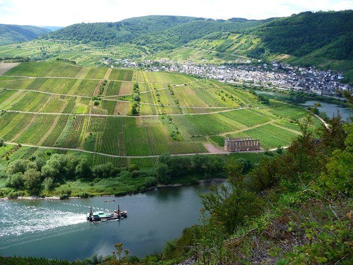 Ausblick vom Calmont auf das Kloster Stuben.