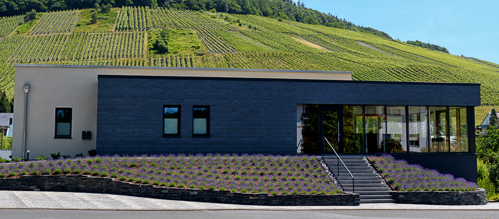 Axel Pauly, Weingut, Mosel