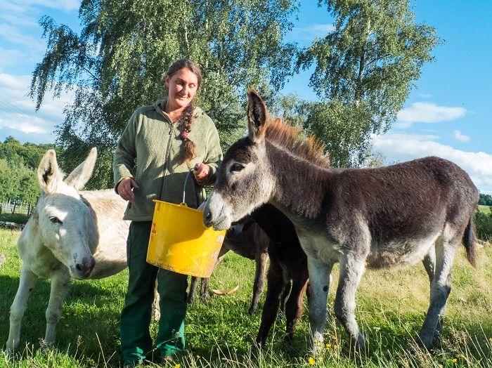 Michaela Scholl und ihre Esel auf dem Veldenzer Bergfrieden.