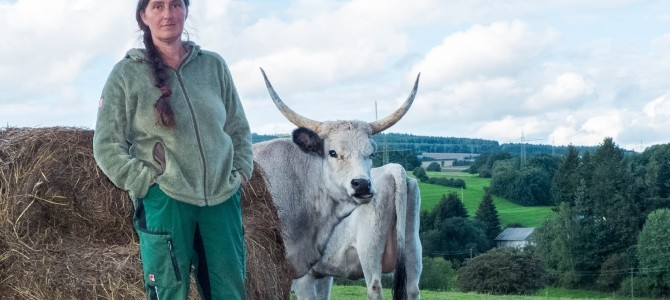 Veldenzer Bergfrieden: Weiße Esel, Zackelschafe & Merenspferde