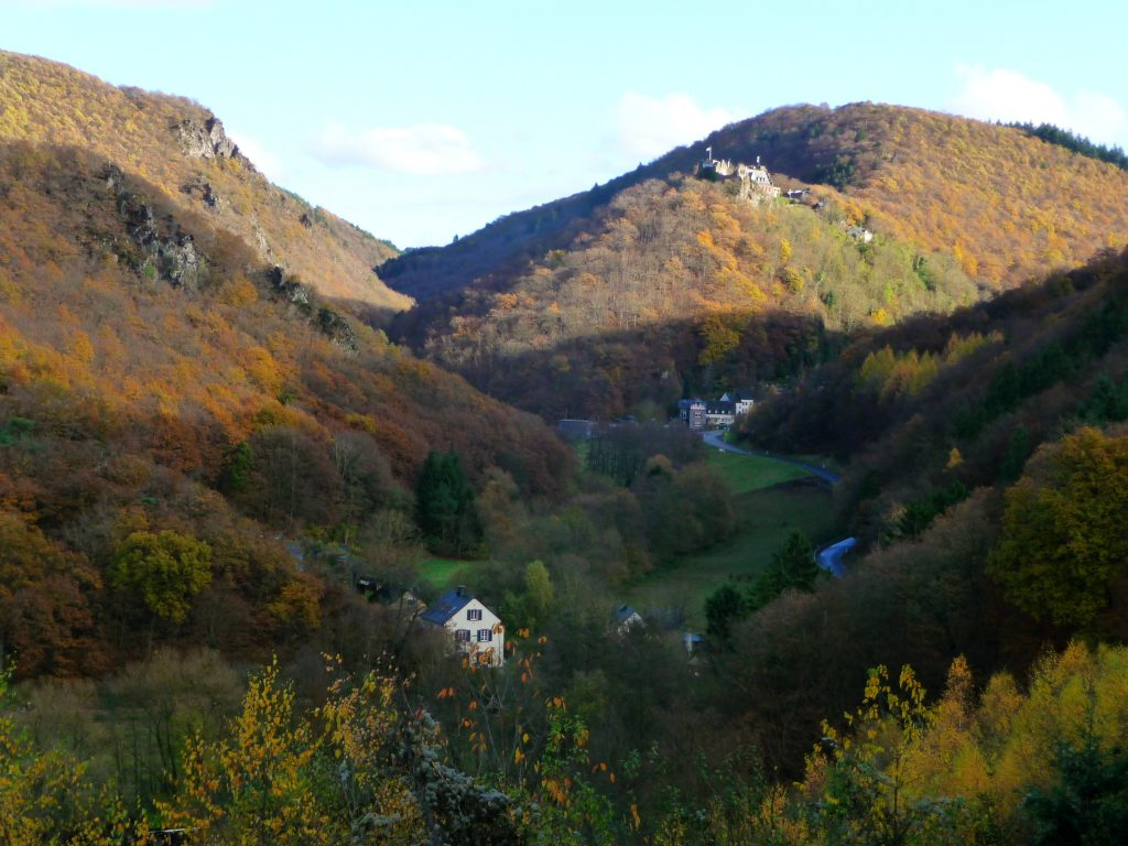 Blick auf Schloss Veldenz und das Tal