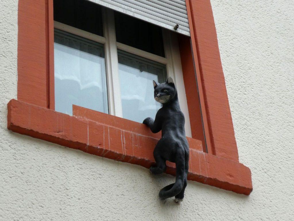 Bernkastel, Burgstraße, Katze