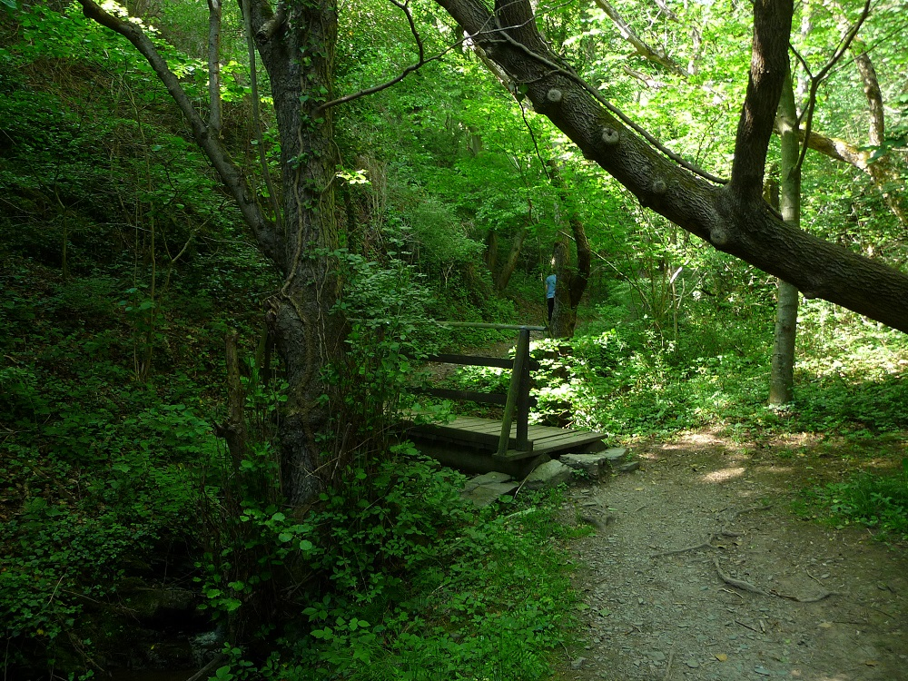 Dortebachtal, Naturschutzgebiet, Mosel