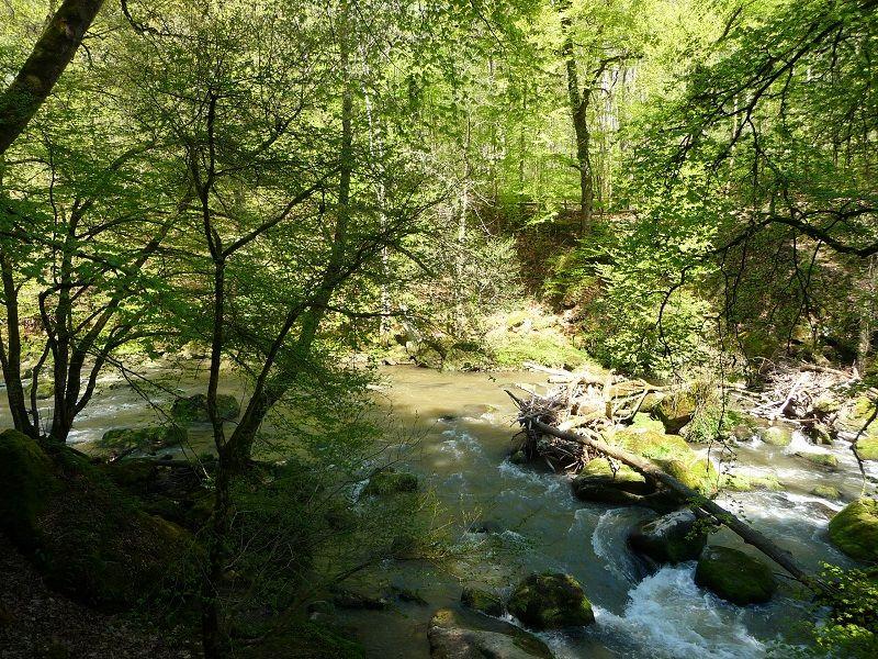 Teufelsschlucht, Eifel, Wandern, Irreler Wasserfälle
