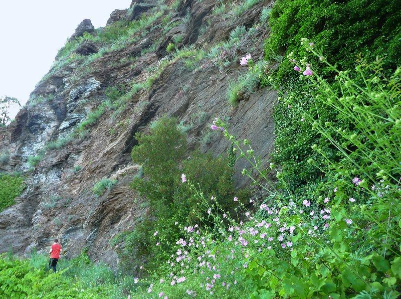 Felswand im Kletterweg Erdener Treppchen