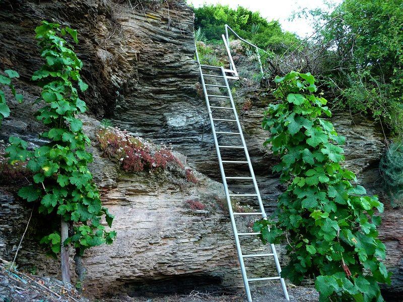 Leiter im Erdener Kletterweg