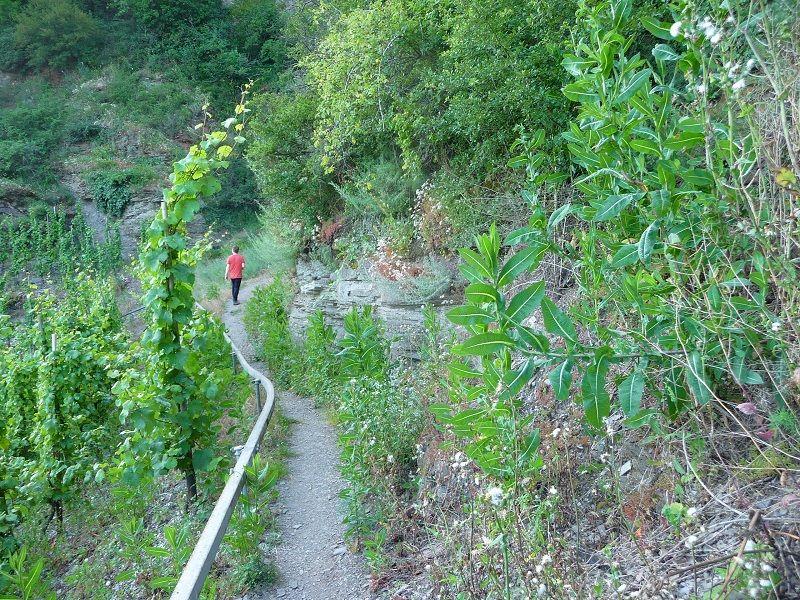 Mosel, Klettersteige, Kletterweg Erden