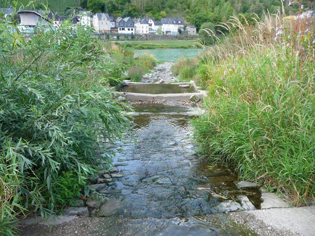 Mosel, Fluss, Nebenflüsse