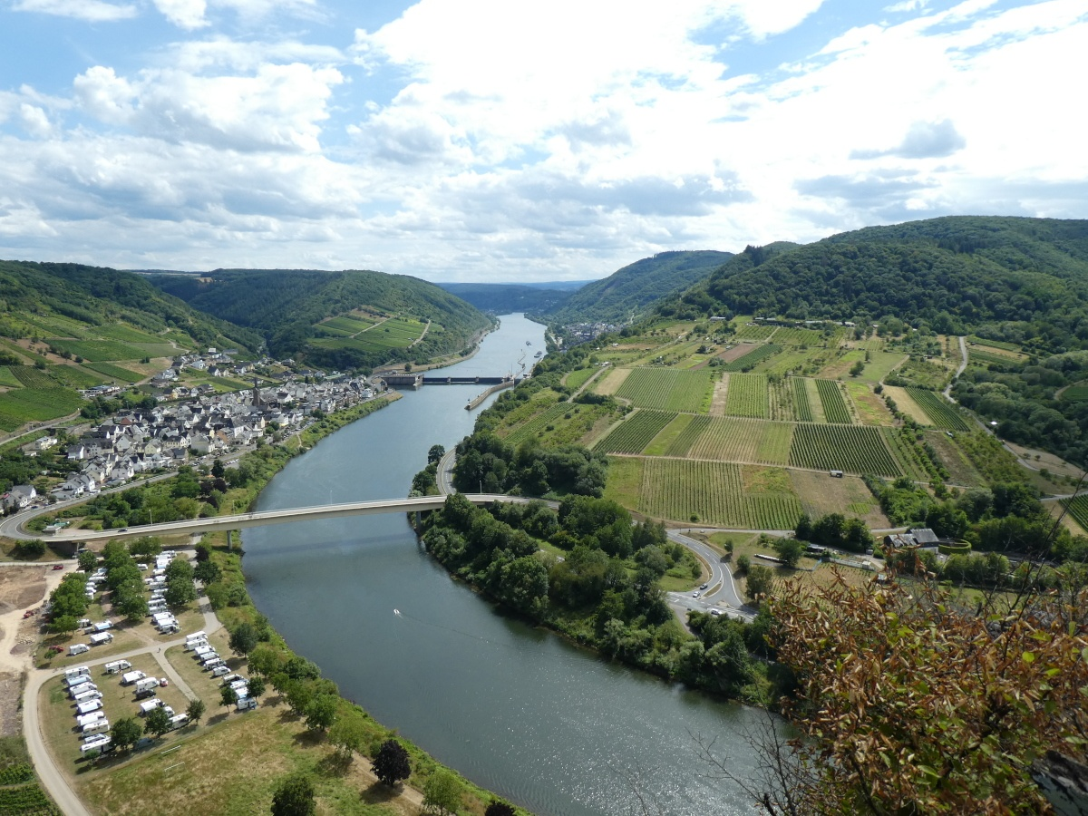Neef, Calmont-Region, Mosel