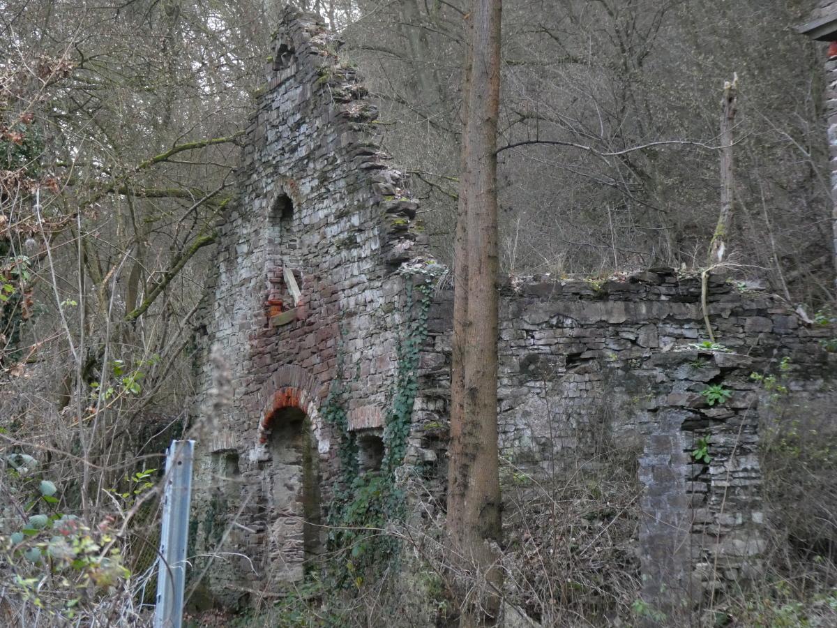 Ruine, Senhals, Mosel