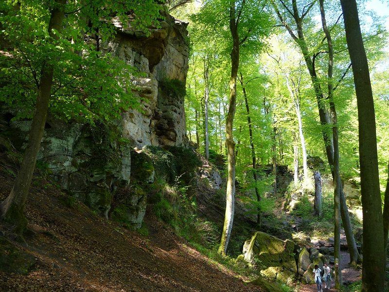 Teufelsschlucht, Eifel, Wandern, Lichtung