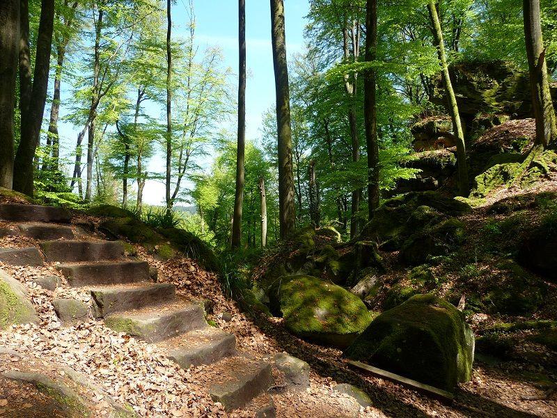 Steintreppe in der Teufelsschlucht.