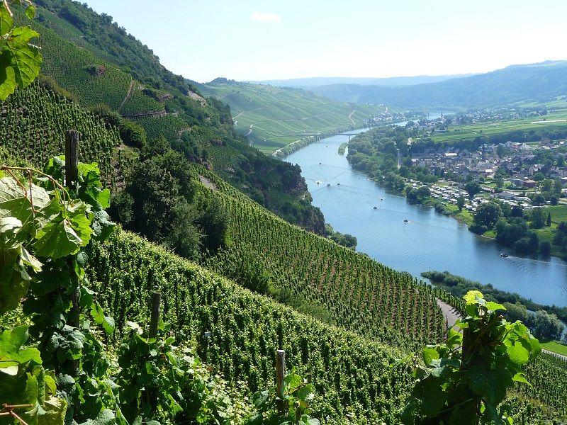 Mosel, Weinbaugebiet, Ürzig