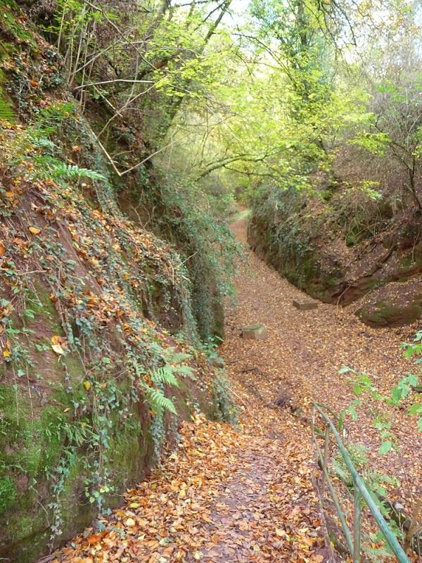 Ürziger Bergpfad, Wanderweg